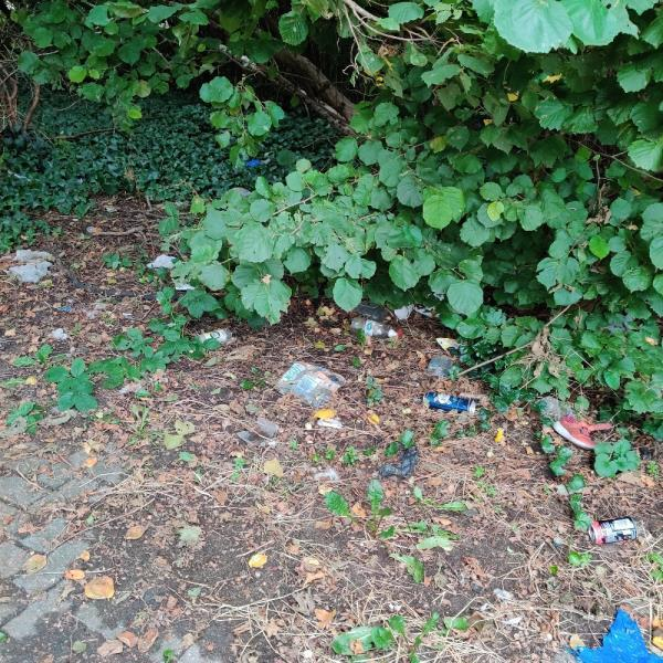 Footpath which leads to Sainsbury's etc rubbish everywhere -1000 Newham Way, London E6 6HT, UK