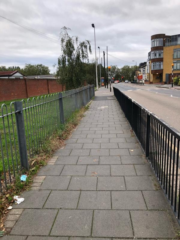 Dog fouling near to pedestrian crossing on major road also nearby on Colegrave road outside 24 next to tree there's some too-12 Parkway Crescent, London, E15 1AB