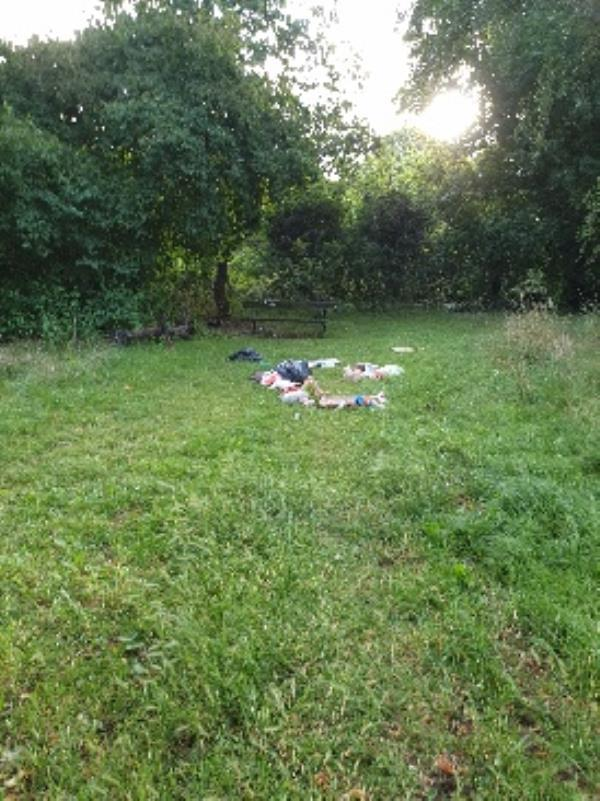 flytipped rubbish again at wykeham road entrance to plmer park-54 Palmer Park Avenue, Reading, RG6 1DN