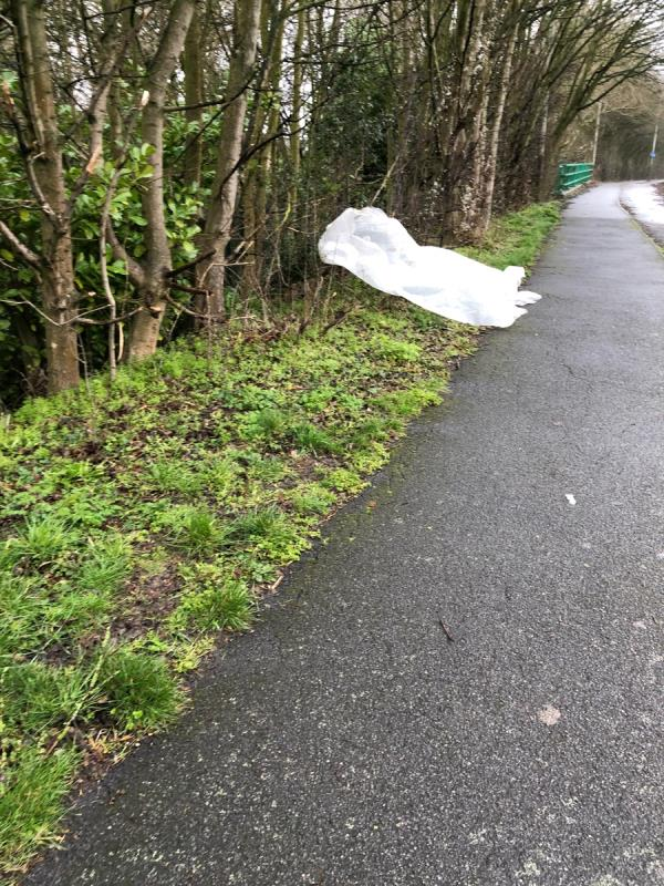 Litter problem along border between ring road and school. There is litter all the way along the school boundary, on both sides of the footpath & in the ditch. It has been like this for months. image 1-559 Palmerston Way, Leicester LE2 3YA, UK