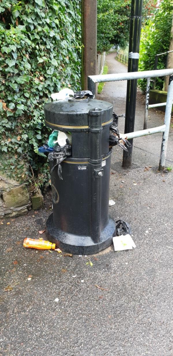 bin full again-38 The Crescent, Northwich, CW9 8AD