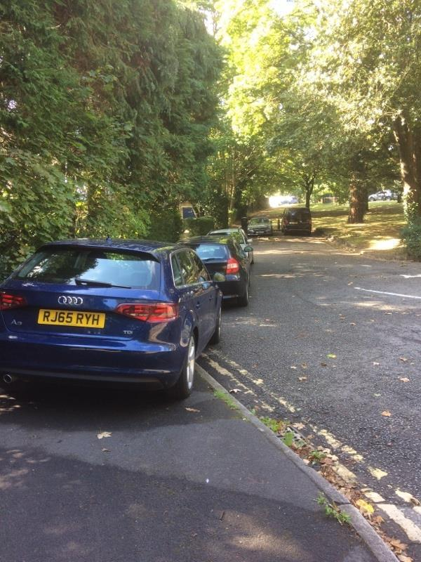 5 cars all parked illegally on double yellow lines again. Can anyone get this sorted out once and for all. It's everyday and no one has done anything to sort it out. -Highgate Court, 119 Highgate Lane, Farnborough, GU14 8AA