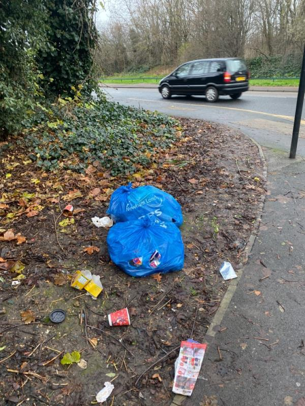 Left overnight for the foxes by Newham cleaning team. -2 Jasper Road, London, E16 3TR