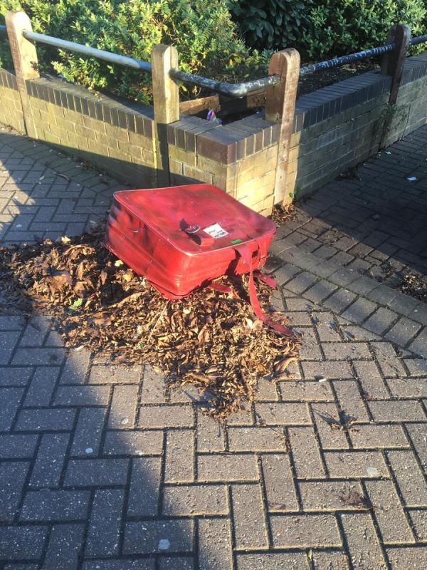 Suitcase on a pile of leaves!-11 West Mersea Close, London, E16 1UD