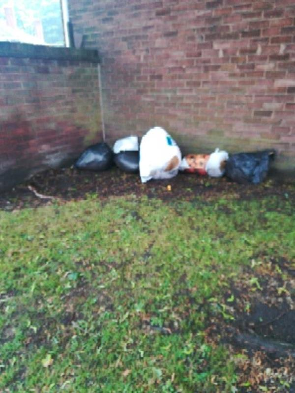 Fly tipped bags of rubbish items x6 adjacent to skemp Close /Carder Crescent behind tree by lamp post -64B Carder Cres, Bilston WV14 0JR, UK