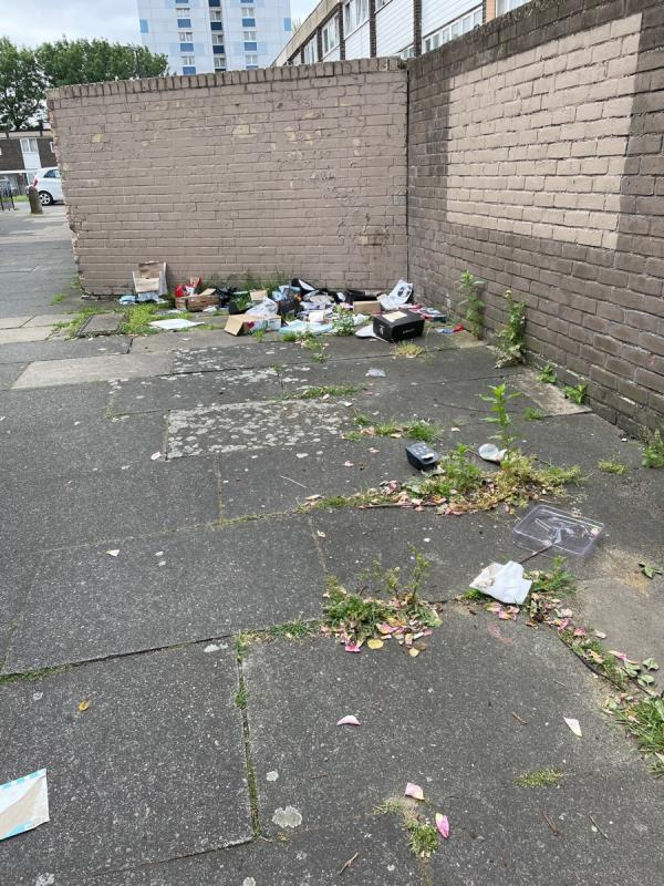 Lots of litter dumped, not in bags-15 Seaton Close, Plaistow, E13 8JJ
