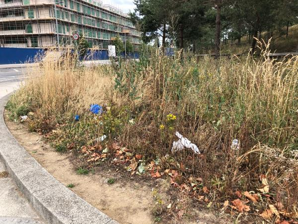 Lots of litter on grass area of temple mills lane at traffic lights-Temple Mills Lane, London, E20 2GL