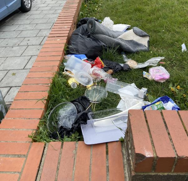 Rubbish all over the grass. Needs to be picked up. -628 Downham Way, Bromley BR1 5HW, UK