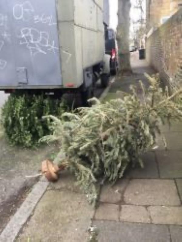 Please clear Christmas trees-2a Ashby Road, Honor Oak Park, SE4 1TE