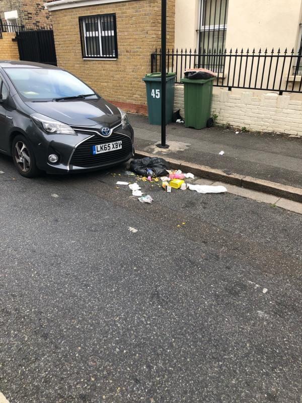Bin bag ripped and contents over road -45a Fairland Road, London, E15 4AF