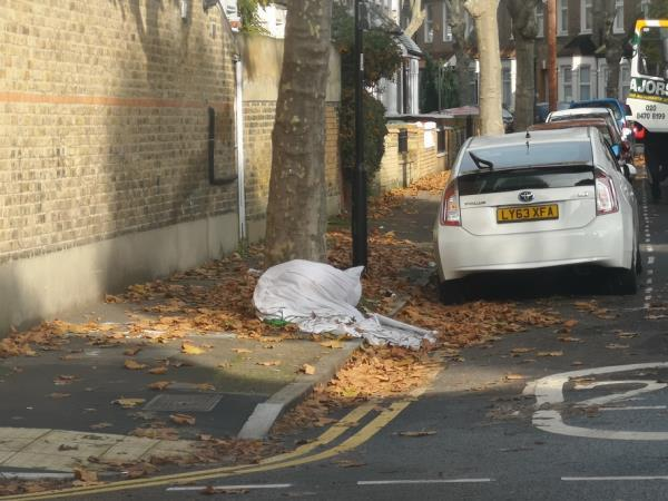 blanket chucked by neighbours in the road and pavement -55b Frinton Road, London, E6 3EZ