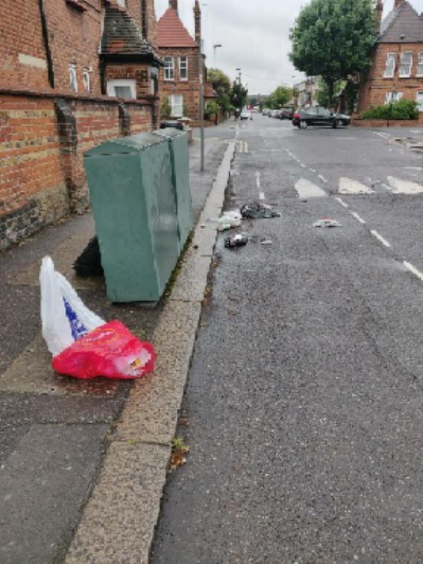 Reported 3 days ago but not sorted so have picked up most of it myself. Still a bag of rubbish there to collect.-109 Farrant Ave, Noel Park, London N22 6PD, UK