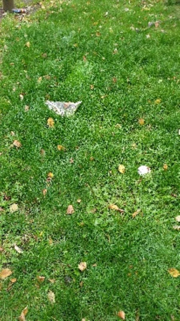 hedges trimmed, all rubbish left behind image 2-3 Blue Gates Rd, Leicester LE4 1AF, UK