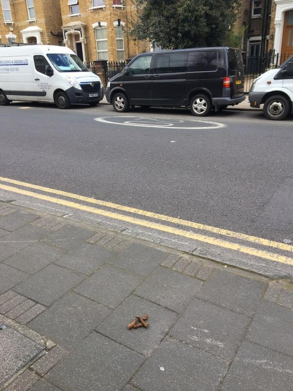 Apprecaite you might not be able to clean this given cv19. But this is gross - dog poo please clean-72 Manor Road, London, N16 5BL