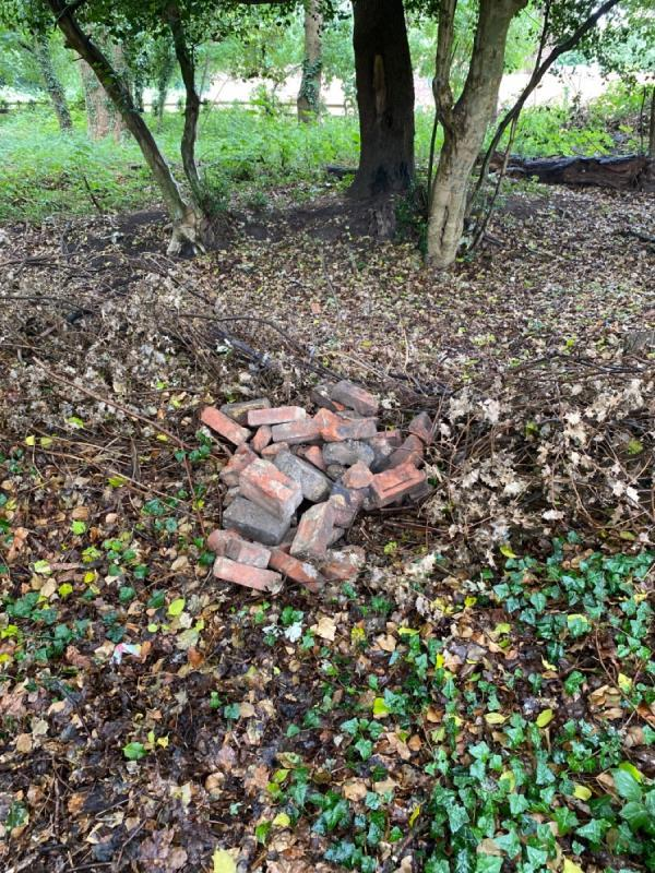 Pile of bricks dumped in woods opposite power compound. Not here yesterday.-113 Cheyne Way, Farnborough, GU14 8SA
