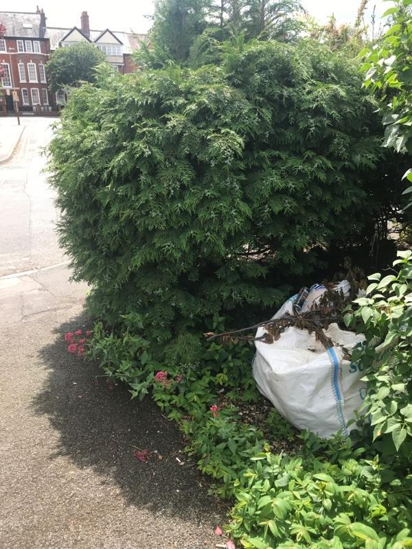 Fly tipping behind a bush near Cherryleas Drive road sign-49 Cherryleas Dr, Leicester LE3 0LT, UK