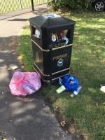 Been like this for a while now. Over flowing bins are quite commonplace in Farnborough now. 3rd I've reported recently. Any idea what's going wrong?  I -25 Sedgemoor, Farnborough, GU14 8JN