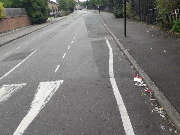 scum dropping rubbish in my road-37 Second Ave, London E13 8AS, UK