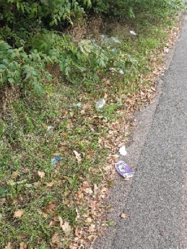 litter by bus stop opposite Sun Way-445 Braunstone Lane, Leicester, LE3 3DD
