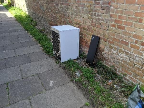 New arrivals on 'Fly-Tip Alley', between Mount Street and Charndon Close. -21 Waldeck Street, Reading, RG1 2RF