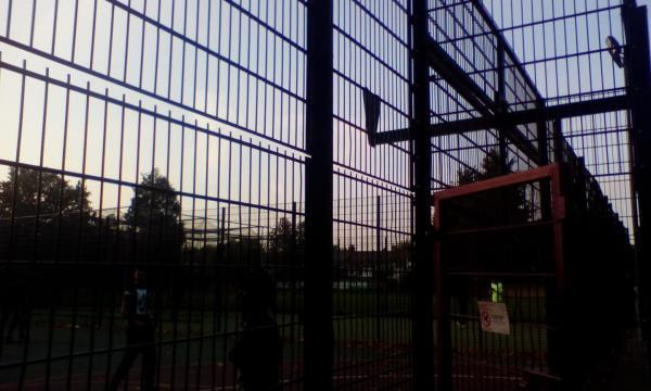 Backboard of basketball court is ripped off and not met rim or net-38 Woodhouse Grove, London, E12 6SR