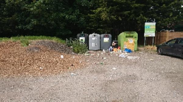 Litter bin over fall now been emptied -40 Liebenrood Road, Reading, RG30 2EB