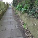 SEESL from NP Zone2 EBC 14th Feb 2020 12pm please could you sweep the paths in front of 230-240 and to the side of 230 Willingdon Rd they are very slippery.   Thank you  Neil  image 2-234 Willingdon Road, Eastbourne, BN21 1XS