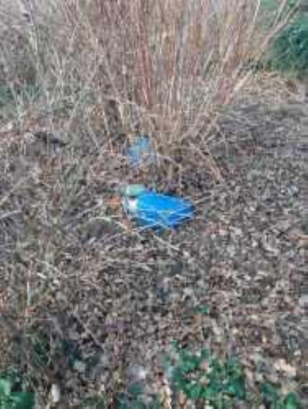 Forster Park. Please clear litter from shrub area at side of footpath from Conisborough crescent-194 Conisborough Crescent, London, SE6 2SG