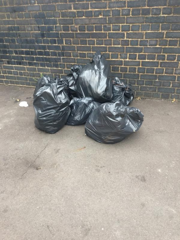 6 black bin liners of rubbish and large cardboard box with packaging-43 Manor Park Road, Manor Park, E12 5AB