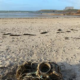Pot and rope - too large for me to get off the beach-