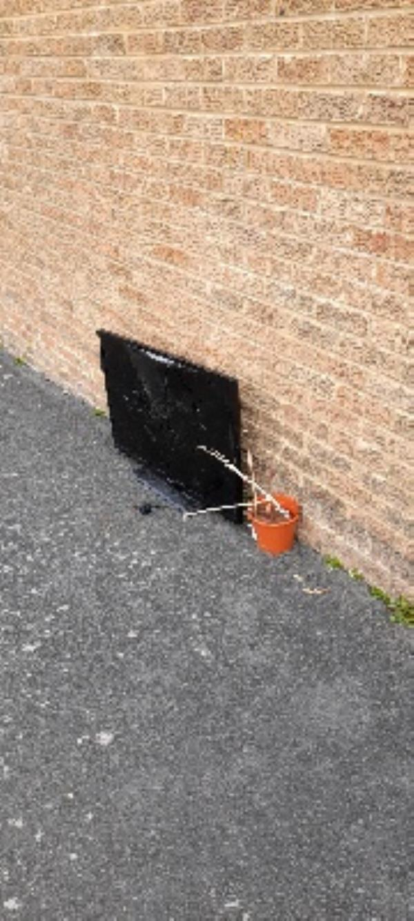 broken tv and a plant pot in alleyway by 12 Harebell Close-12 Harebell Close, Eastbourne, BN23 8BZ