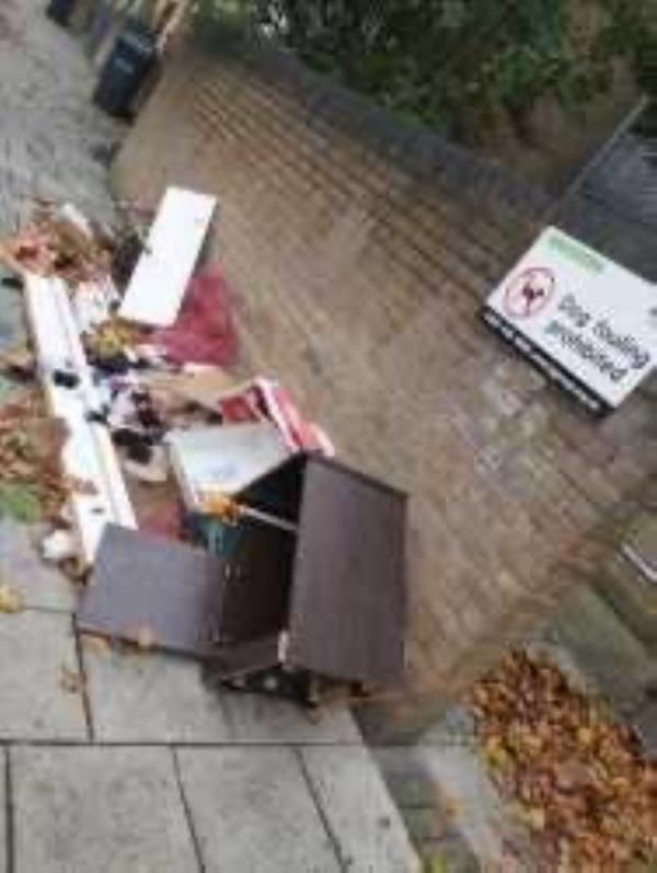49 Alpine Road. Please clear fkytip. Reported by London & Quadrant-39 Reculver Road, South Bermondsey, SE16 2RW