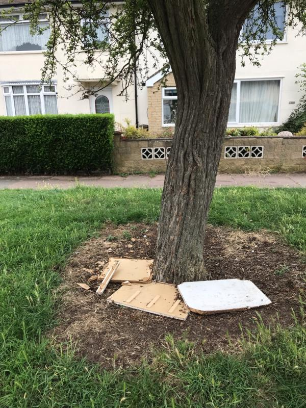 Bits of wood dumped around the base of this tree -107 Pindar Road, Leicester, LE3 9RP