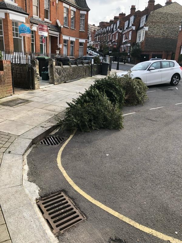 Somebody dumped trees on the road this morning. This also blocks parking spaces-86 Milton Park, London, N6 5