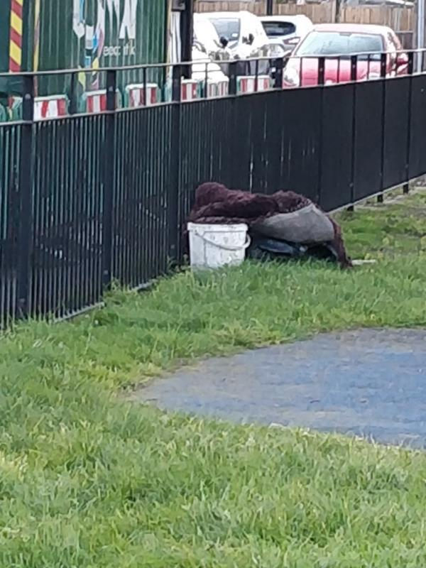 fly tipping in the park -70 Odessa Road, London, E7 9BQ