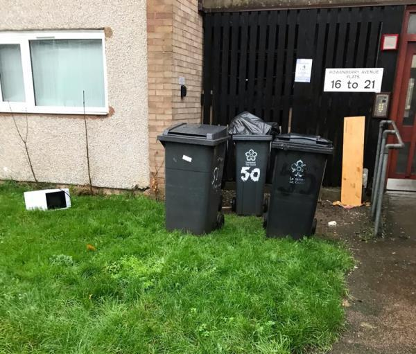 Dumped wood,microwave removed from bin by bin man lying on grass overfilled bin already only emptied today.-29 Rowanberry Avenue, Leicester, LE3 6PN