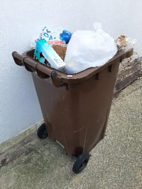 seesl- can you please remove abandoned contaminated brown bin from the alleyway opposite 65 Firle rd-3 Western Road, Eastbourne, BN22 8HS