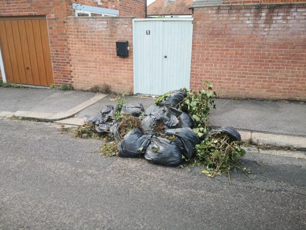 Truck load of garden clearance dumped in road-15 Lennox Road, Reading, RG6 1PL