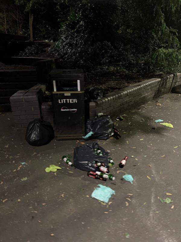 Fly tipped bags of waste (bottles, food waste etc.) being ripped open by foxes and birds. Next to bin on Swan Approach next to Mitchell Walk-2 Linton Gardens, London, E6 5SQ