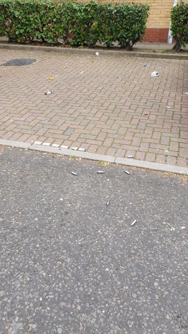 Street need of cleaning as rubbish flying everywhere -65 Angelica Drive, London, E6 6NS