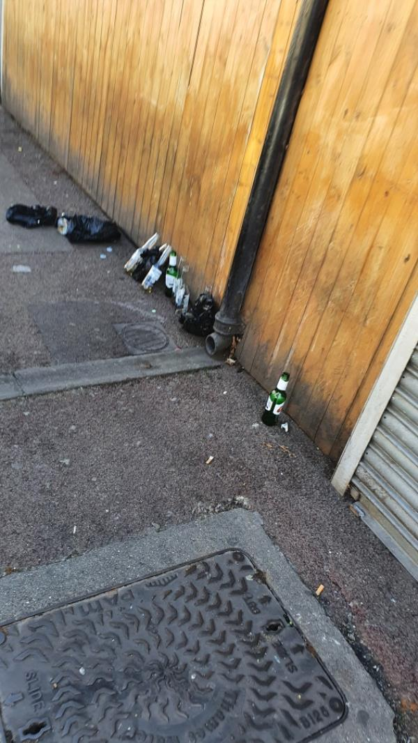 alcohol bottles all over the street-3 Heigham Road, East Ham, E6 1JB