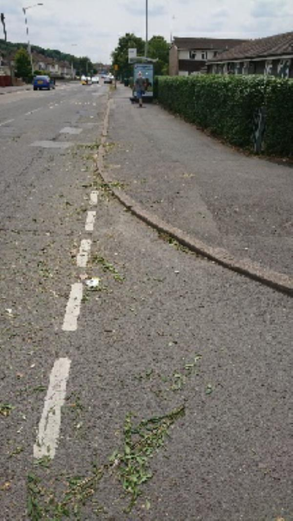 The hedge at Durham close the old people's place has been cut buy parks and left over the road  -444 Northumberland Avenue, Reading, RG2 8NR