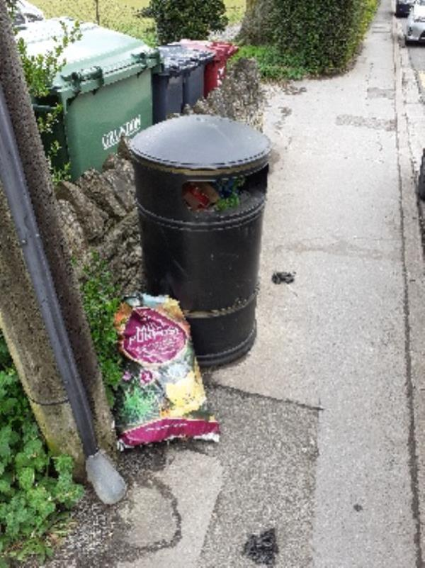 garden and household waste in and around bin on going problems with bin and fly tipping here no evidence taken -6 Armour Road, Reading, RG31 6HS