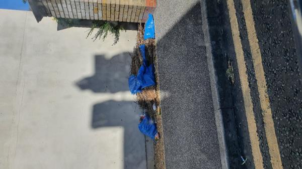 Fire hazard. Bags of dry palm leaves -516 Romford Road, London, E7 8AF