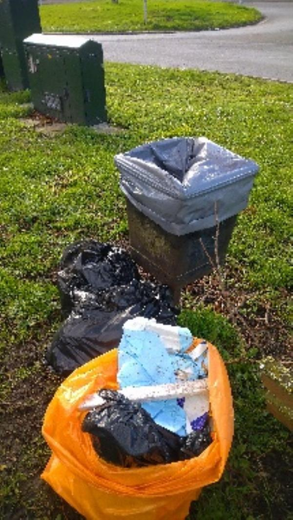 Bin full of household waste plus two bags of flytipped household waste . No evidence, taken. -1017 Oxford Road, Reading, RG31 6TQ