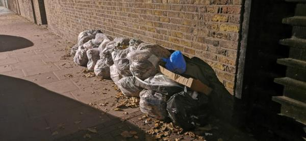 Uncollected garden waste (leaves) plus litter bags and other items-34 St Martins Avenue, London, E6 3DX