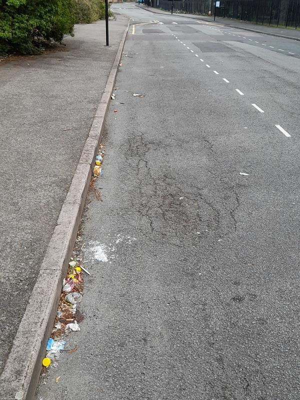 street not been cleaned for over a week ...rubbish left by the scum that drive in to our road and sit in their cars and eat their chavvy take aways  image 1-31 First Avenue, Plaistow, E13 8AP