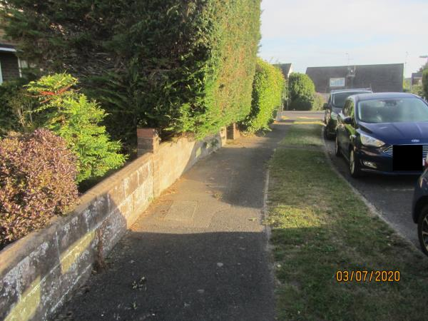 Footpath on Rosemary Avenue obstructed by overgrown hedge (Leylandi)  The offending hedge is located at 22.Rosemary Avenue.-22 Rosemary Avenue, Steyning, BN44 3YS