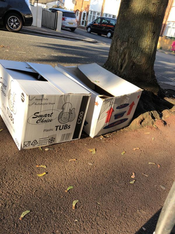 Near to the tree on the corner of ravenhill - 2 boxes-37a Fawn Rd, Upton Park, London E13 9BN, UK