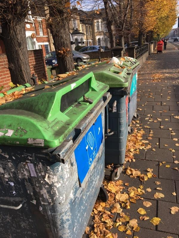 These bins are always over flowing and gross. They invite people to litter and are an eyesore. Can they be removed?-339d Romford Road, London, E7 8AA